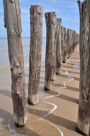 Beach Corridor Corridor View Day Nature No People Outdoors Poles Posts Sand Sea Seaside Wood