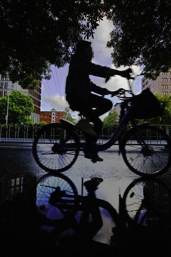 雨后春树底,街边小水洼,远近行人过,高下看云霞。 reflection Bicycle Riding Tree City Street Outdoors Reflection Pond Water After Rain
