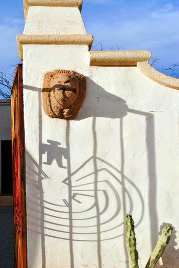 I'itoi Tohono O'odham Symbol Of Life Native American Church Catholic Cacti Winter Lion King  What Do You See?
