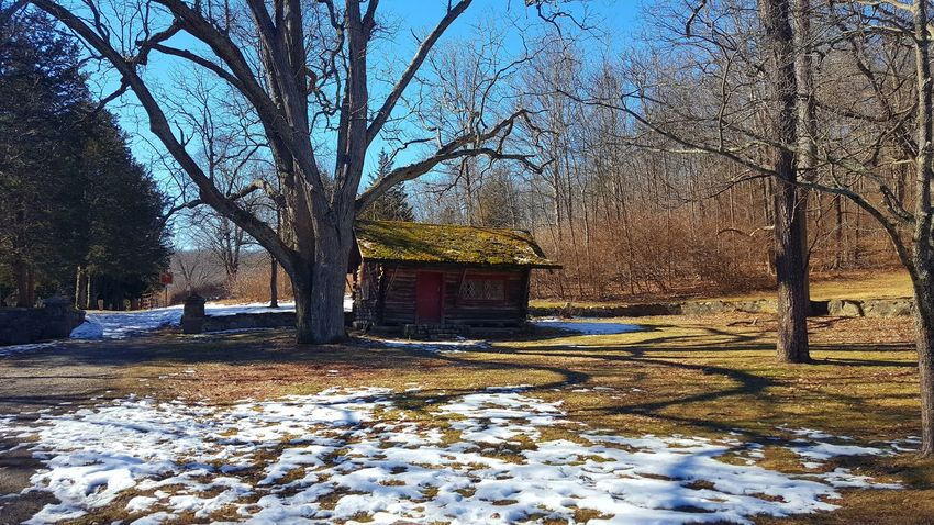Tree Snow Winter Built Structure Building Exterior Architecture Day Ringwood State Park No People Outdoors Sky