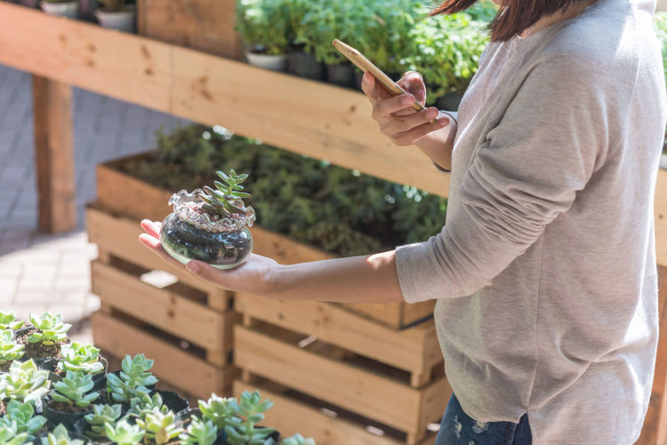 Midsection of woman holding smart phone while standing on plant