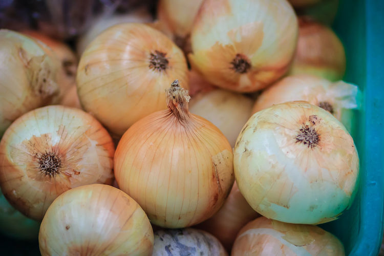 Extra jumbo size of bulb onion or common onion for sale at the fresh market. The onion is a vegetable and is the most widely cultivated species of the genus Allium. Bulb Onions Close-up Focus On Foreground Food Food And Drink For Sale Freshness Full Frame Healthy Eating High Angle View Indoors  Large Group Of Objects Market No People Onion Onions Raw Food Retail  Selective Focus Still Life Vegetable Wellbeing