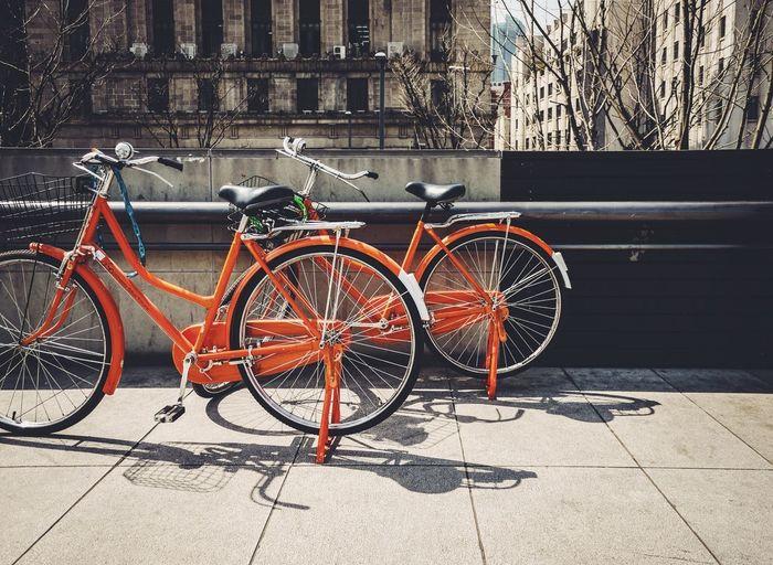 Bike Shanghai, China Orange Pudong, The Bund