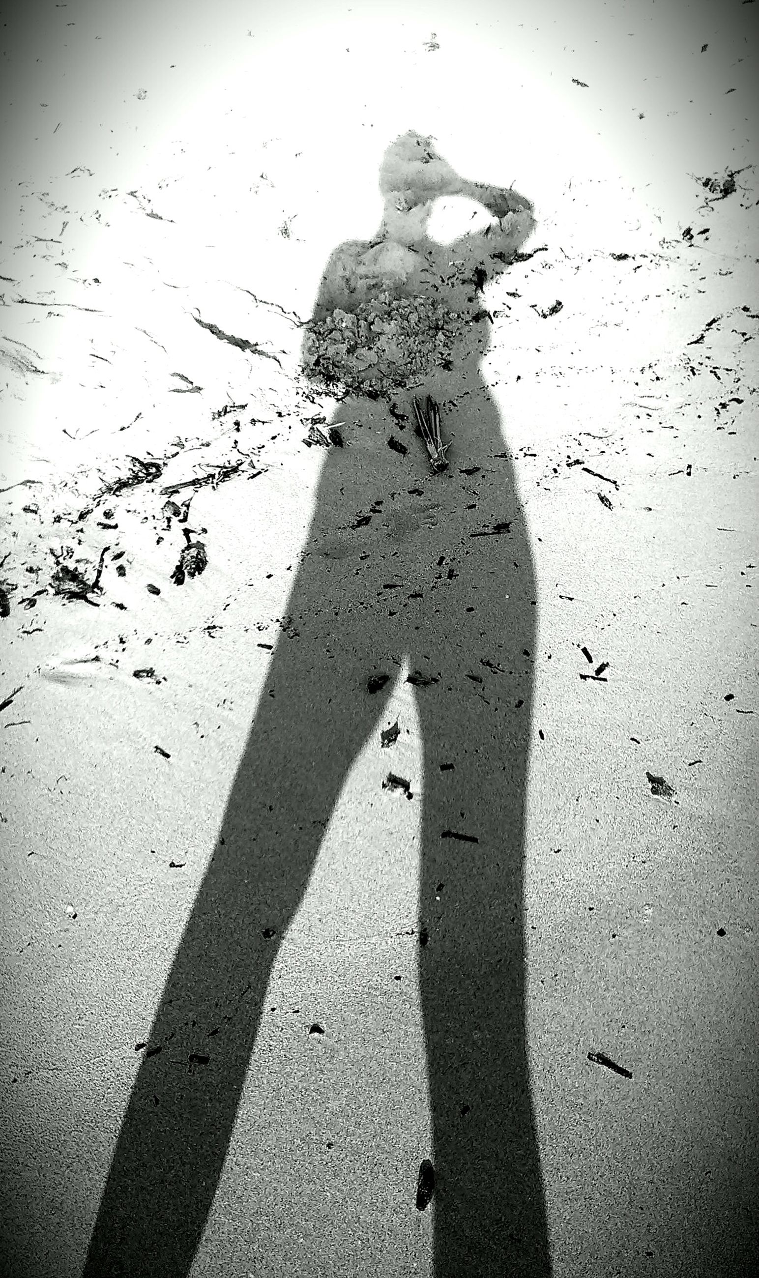 shadow, lifestyles, focus on shadow, leisure activity, sunlight, standing, silhouette, men, outline, gesturing, outdoors, day, high angle view, three quarter length, arms raised, person, auto post production filter