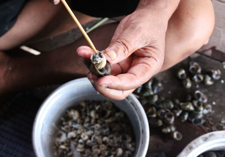 Midsection of man removing snail from shell