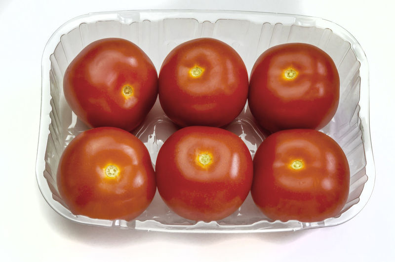 High angle view of tomatoes on white background