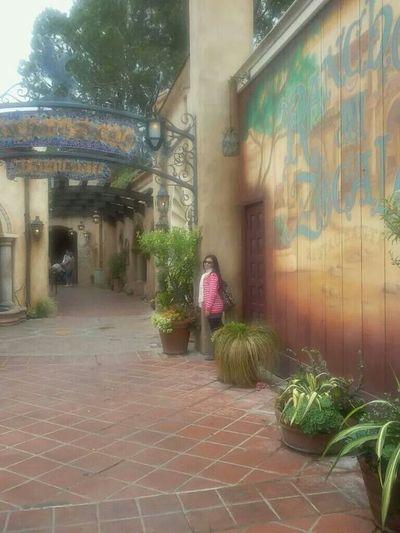 nicetrip Disneyland Californiaadventures