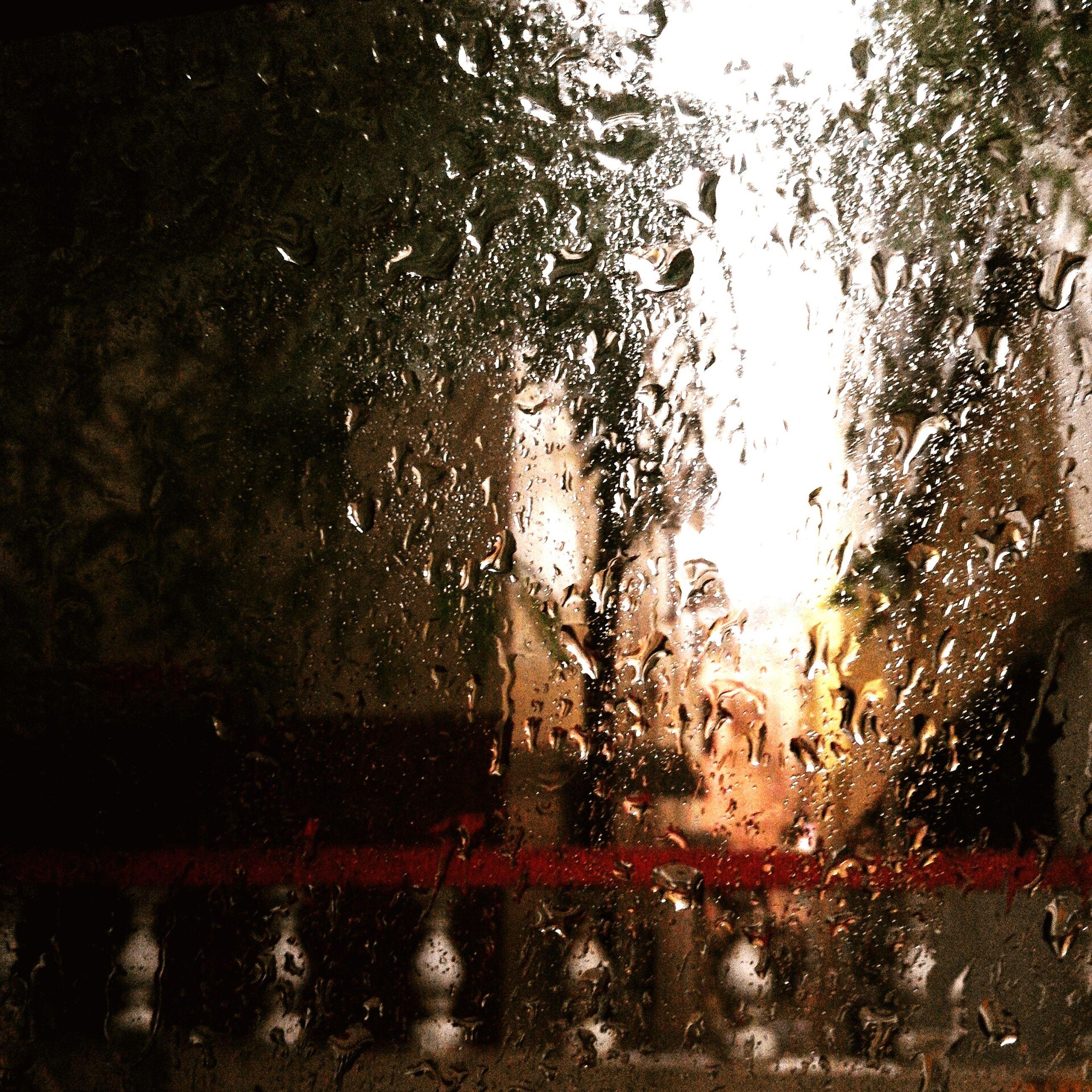 wet, drop, window, rain, glass - material, transparent, water, raindrop, season, indoors, car, monsoon, weather, glass, street, tree, transportation, land vehicle, close-up, focus on foreground