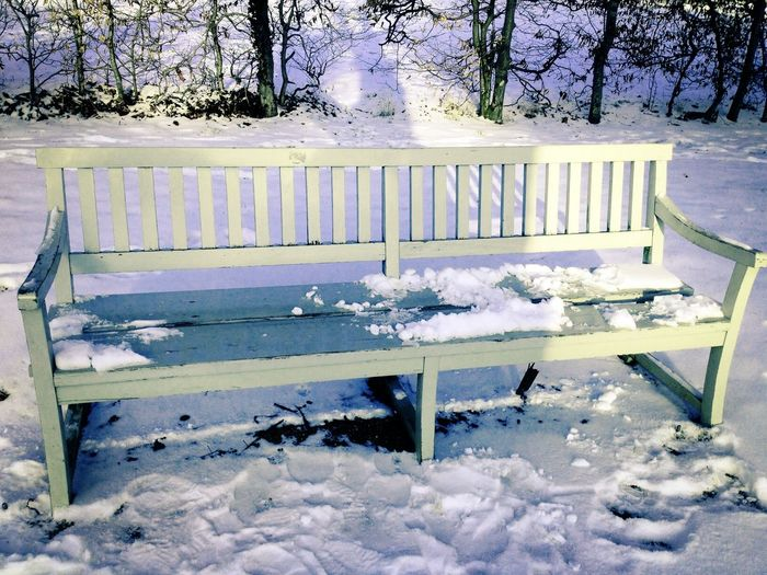 Urban Landscape Winter Bench in the Snow Light And Shadow Park Sanssouci Park Potsdam , Germany Deceptively Simple Capture The Moment It's Cold Outside Hidden Gems  Breathing Space Shades Of Winter