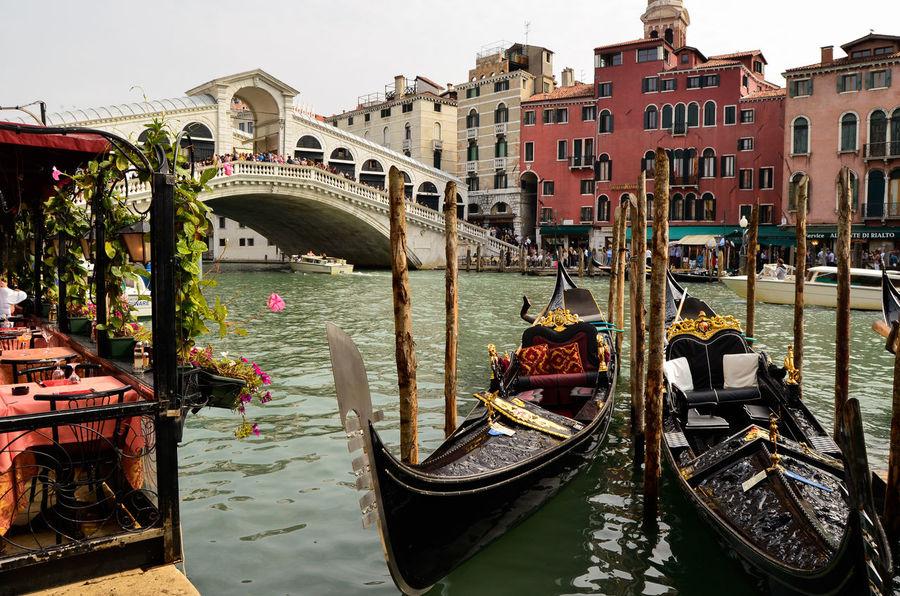 Venezia Ponte Di Rialto Venice, Italy Gondola Canale  Veneto Italia Travel Photography Travel Destinations Taking Photos Nikon D5100