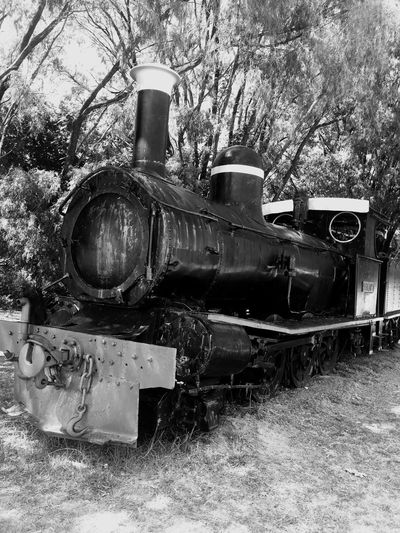 Pemberton Train