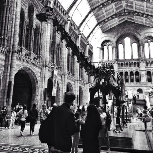 Getting my geek on! Love Museums Hanging With The Dinosaurs Monochrome Love