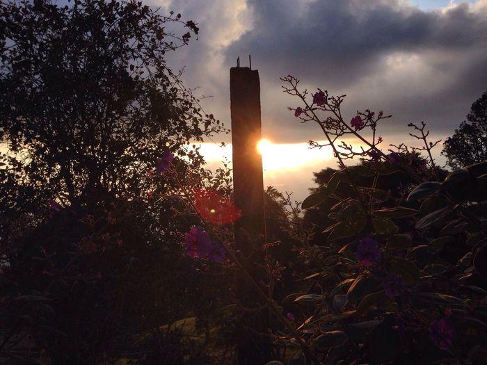 flare. First Eyeem Photo Komorebi Sunset