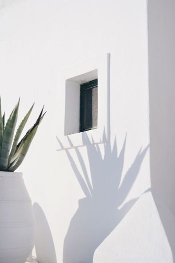 Simple Photography Simplicity Minimalistic Shadow Sunlight Built Structure Architecture Whitewashed Window No People Close-up EyeEm Best Shots EyeEm Nature Lover Eye4photography  EyeEm Selects The Week On EyeEm TheWeekOnEyeEM Santorini Greece Greek Islands Shadows & Lights Shadowplay Shadows Minimalism Minimal Capture Tomorrow