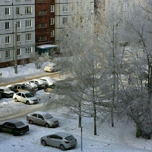 казань сегодня  сейчас снег иней мороз зима Россия