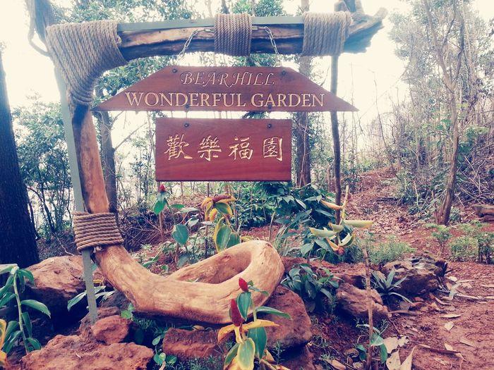 Bearhill Beautiful ♥ Flowers,Plants & Garden