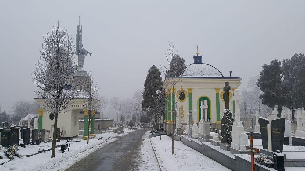 In Memoriam Winter Cold Temperature Snow