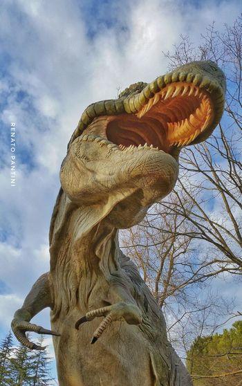 Tyrannosaurus rex Tyrannosaurus Tyrannosaurus Rex Tyrannosaurusrex Dinosaur Replicas Dinosauro Exhibition Tirannosauro Chianciano Terme Dinosaurs Park Extinct Species Extinct Chianciano Dinosauri DinosaursAroundTheWorld Dinosaurs