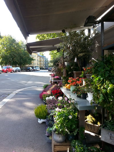 Streetphotography Street Life Flowershop Flowers City Life Daily Life Vestkantorget Architecture Potted Plant City Building Exterior Sidewalk Discoveries Pavement Life Outdoors Urbanphotography Urban Lifestyle Urban Life