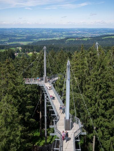 Alps Baumwipfelpfad Bodensee Bodenseeregion Day Forrest Industry Landscape Nature No People Outdoors Tree