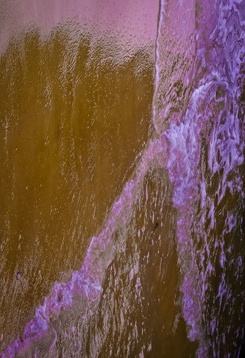 Purple Splash Abstract Backgrounds Beauty In Nature Blue Close-up Detail Fragility Full Frame Growth Gunbir Illuminated Nature Night No People Purple Weather