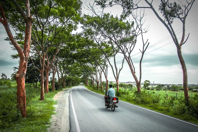 Road Tree Transportation Rear View The Way Forward One Person Rural Scene Full Length People Outdoors Day Mature Adult Riding Adult Motorcycle Nature Sky One Man Only Landscape Adults Only Overcast Sky The Week On EyeEm