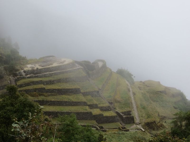 Landscape Nature Fog Beauty In Nature Mountain Tranquil Scene Tranquility Scenics Day No People Growth Mist Tree Outdoors Sky Peru Inca Trail Inca Ruins Travel Destinations Hiking