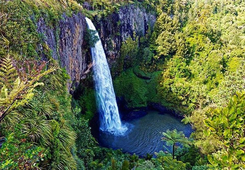 Simply wonderfall 1 // Bridal Veil Falls Bridalveilfalls Raglan Hamilton Waikato WestCoast Northisland Newzealand Beautiful Waterfall MightY Nature Wilderness Jungle Ig_newzealand Neuseelandern Nzmustdo Purenz Hamiltonwaikato Instatravel Travel Backpacking Newzealandguide