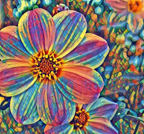 Flower Multi Colored Close-up Fragility High Angle View Freshness Vibrant Color Flower Head Colorful Petal Variation Large Group Of Objects Nature Day Springtime Bloom Beauty In Nature No People Abundance In Bloom