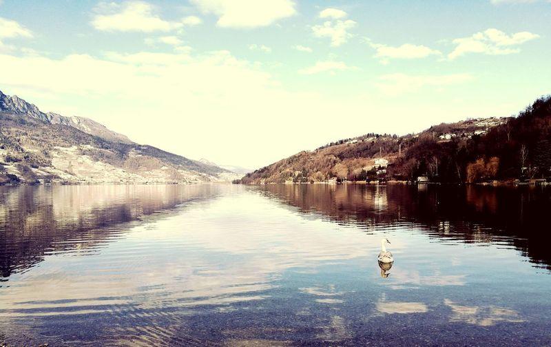 False reflectiom Reflection Sky Water Lake Cloud - Sky Tranquility Mountain