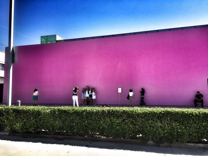 Famous pink wall in Los Angeles Check This Out