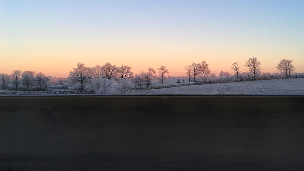 On the road early morning, sun is rising and temperature is -7 degrees. Stunning. Cold Temperature Winter Nature Tree Weather Tranquil Scene Scenics Frozen Beauty In Nature Clear Sky Outdoors Landscape No People Sky France Creuse Sunrise