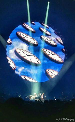'David Gilmour Live 2015' Davidgilmour Pinkfloyd Live RoyalAlbertHall Concert Music Gig Mypassion England Ladyphotographerofthemonth