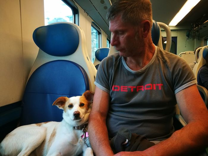 Man With Dog Sitting In Train