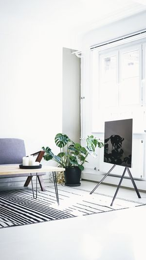 Office Absence Chair Computer Day Flooring Furniture Growth Houseplant Indoors  Nature No People Plant Potted Plant Seat Still Life Table Technology White Color