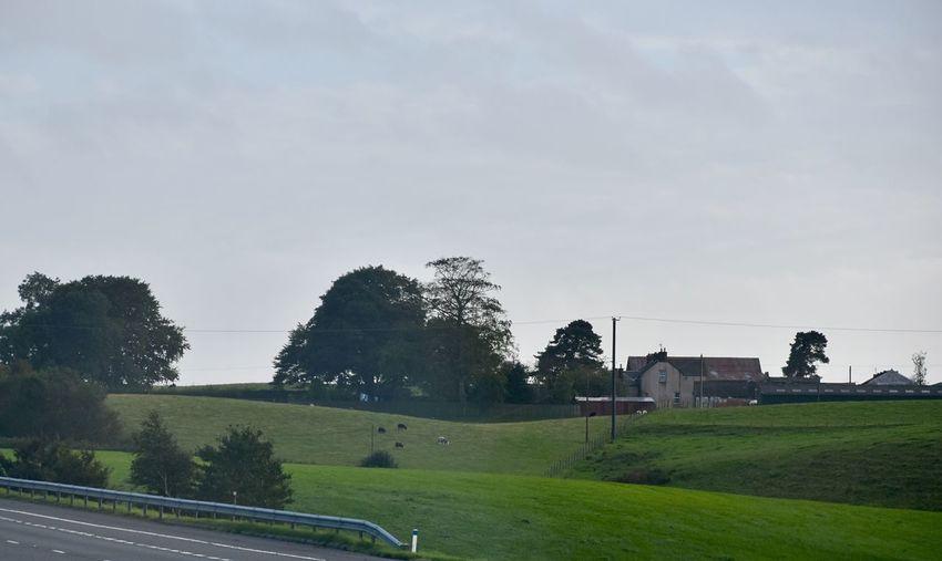 Taking Photos Motorway View Landscape Nikon D5500 Rural Scene