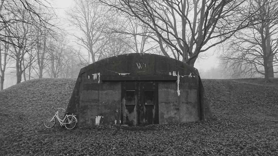 Bicycle Bunker Schelter Naardenvesting Blackandwhite Built Structure Tree Architecture Outdoors Day No People Sky