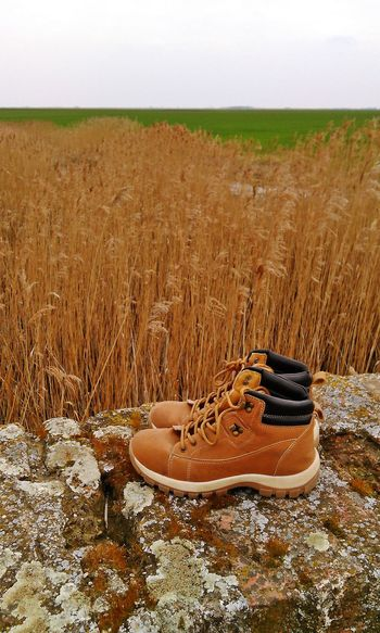 Beauty In Nature Brogue Clear Sky Day Field Grass Hiking Hiking❤ Lakeshore Landscape Nature No People Non-urban Scene Outdoors Plant Sky Tranquil Scene Tranquility Water