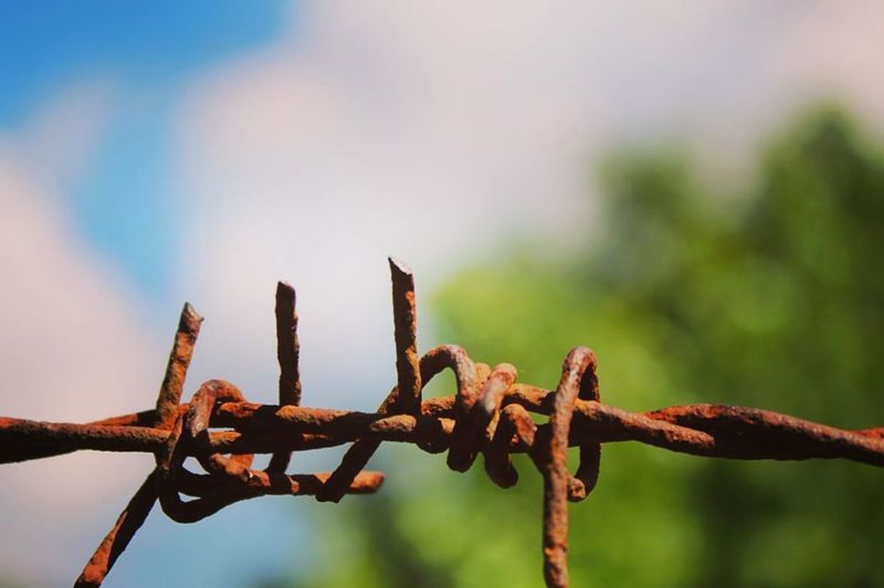 Close-up of rusty metal fence against sky
