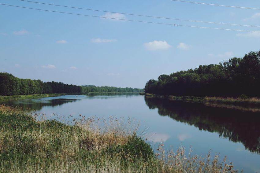 Am Fluss River Donauradweg Donau Danube River Danube Day Filter Tree Water Reflection Sky Grass Cloud - Sky Plant Landscape