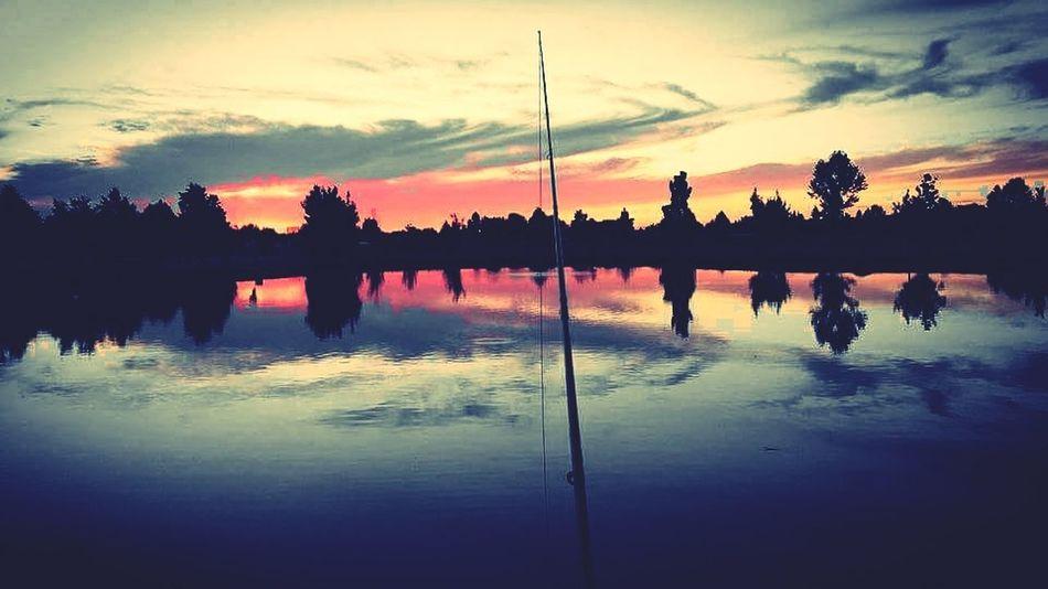 Summersunset Summer Sunset Fishing Lastcast Pond Life Pond City Life Boiseidaho Idahahome Serenity Peaceful Peaceful View Peaceful Evening Metime