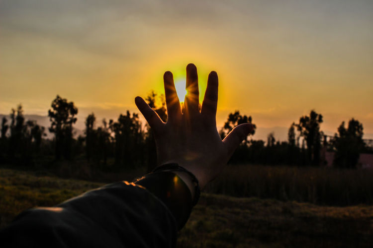Take control Getty Images Photography EyeEm Nature Lover Sunset Silhouette Tree Sky Landscape Plant Close-up Dramatic Sky