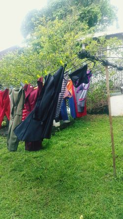 Life in the tropics.... Clothesline Clothes