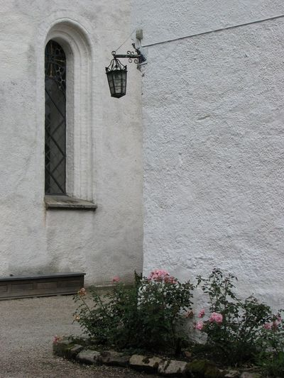 Sjöbo Tranquillity White Wall Window Whitchurch Sweden Rosebushes Rosebush