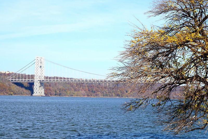🌉 🇺🇸Bridge Bridge View George Washington Bridge New York Hudson River Taking Photos Seeing The Sights EyeEm Gallery Check This Out Showcase: November Battle Of The Cities
