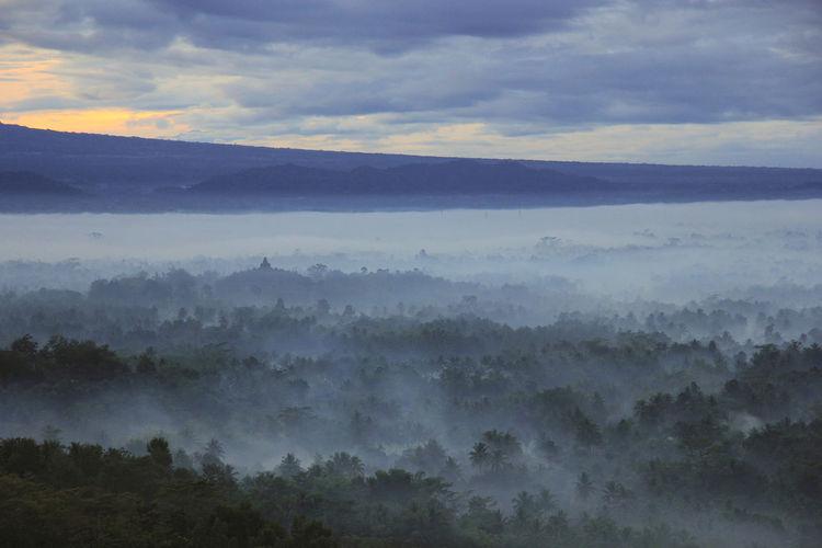 Beauty In Nature Majestic Landscape Environment Nature Sky Fog Tranquility Punthuk Setumbu Setumbu Borobudur From Setumbu Borobudur From Phuntuk Setumbu Borobudur Magelang Central Java Jawa Tengah INDONESIA