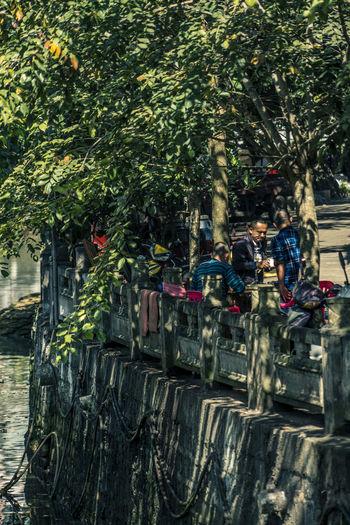 树荫洒长街,水声绕高台,轻风方此过,食得饭去来。 shadow Tree Group Of People River Street People Lifestyles City