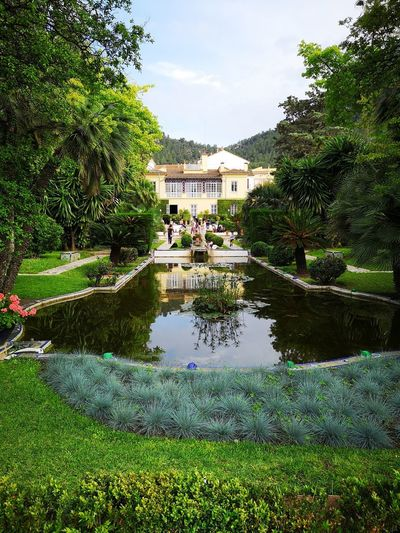 Garden SPAIN Xativa House Manor House Manor House Gardens Water Tree Reflection Swimming Pool Sky Grass Lily Pad Lotus Water Lily Pond