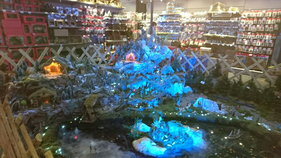Decoration Christmas Decorations Marketplace VitrinedeNoel Grands Magasins Christmas Lights