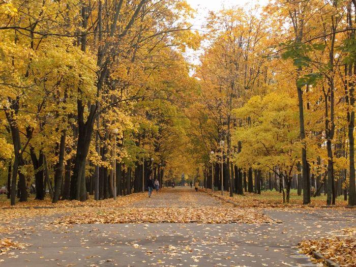Autumn Moscow